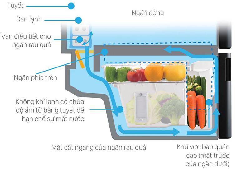 Thiết kế ngăn hiện đại cho việc lưu trữ và giữ ẩm thực phẩm dễ dàng hơn.