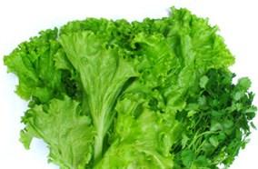 Ngăn rau quả giữ ẩm hiệu quả