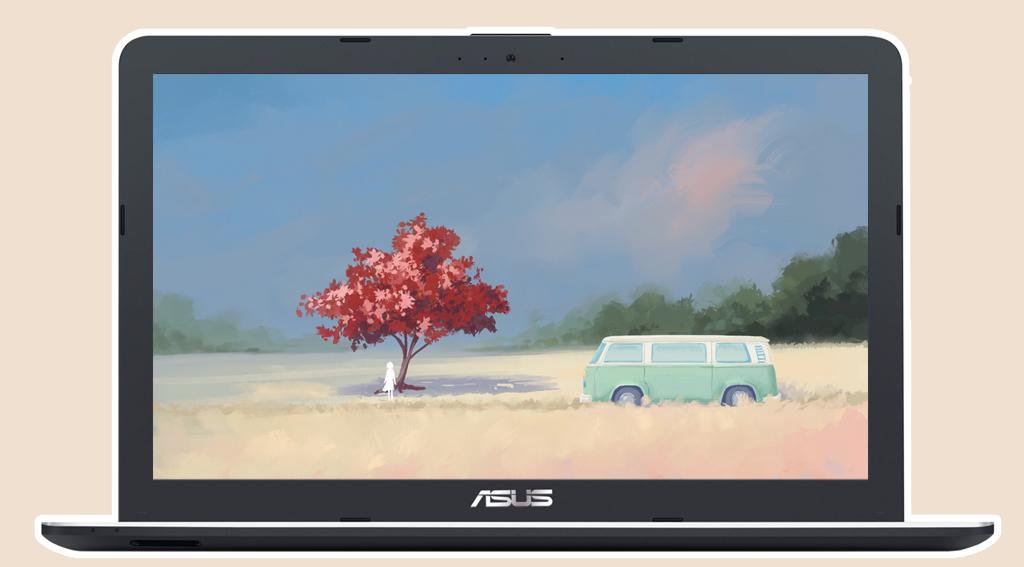 Asus X441UA i5 6200U - Màn hình 14 inch